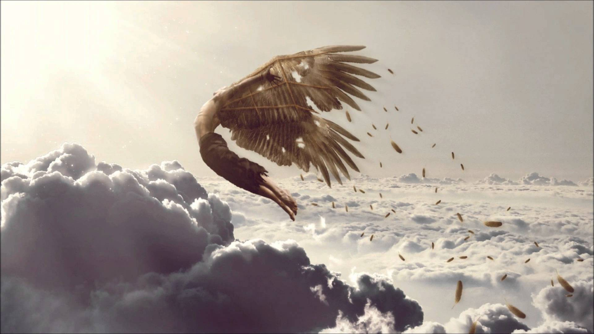 Homepage Icarus Brewing   Lakewood NJ 1920x1080