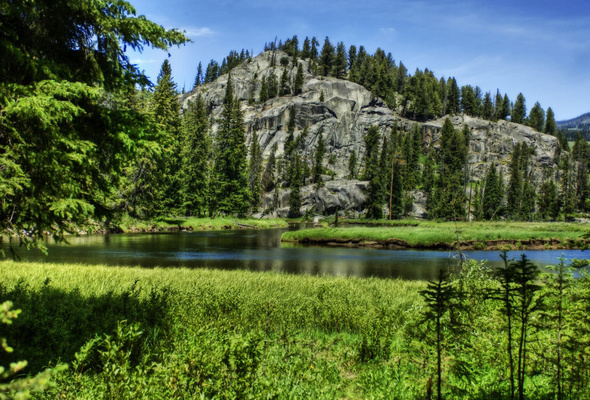 Wallpaper yellowstone national park usa mountain river spruce 590x400