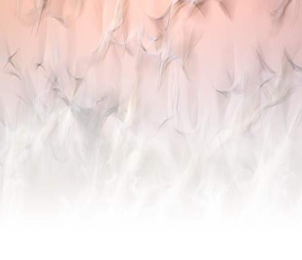 Rocky Pines Amazing Grace 960x826