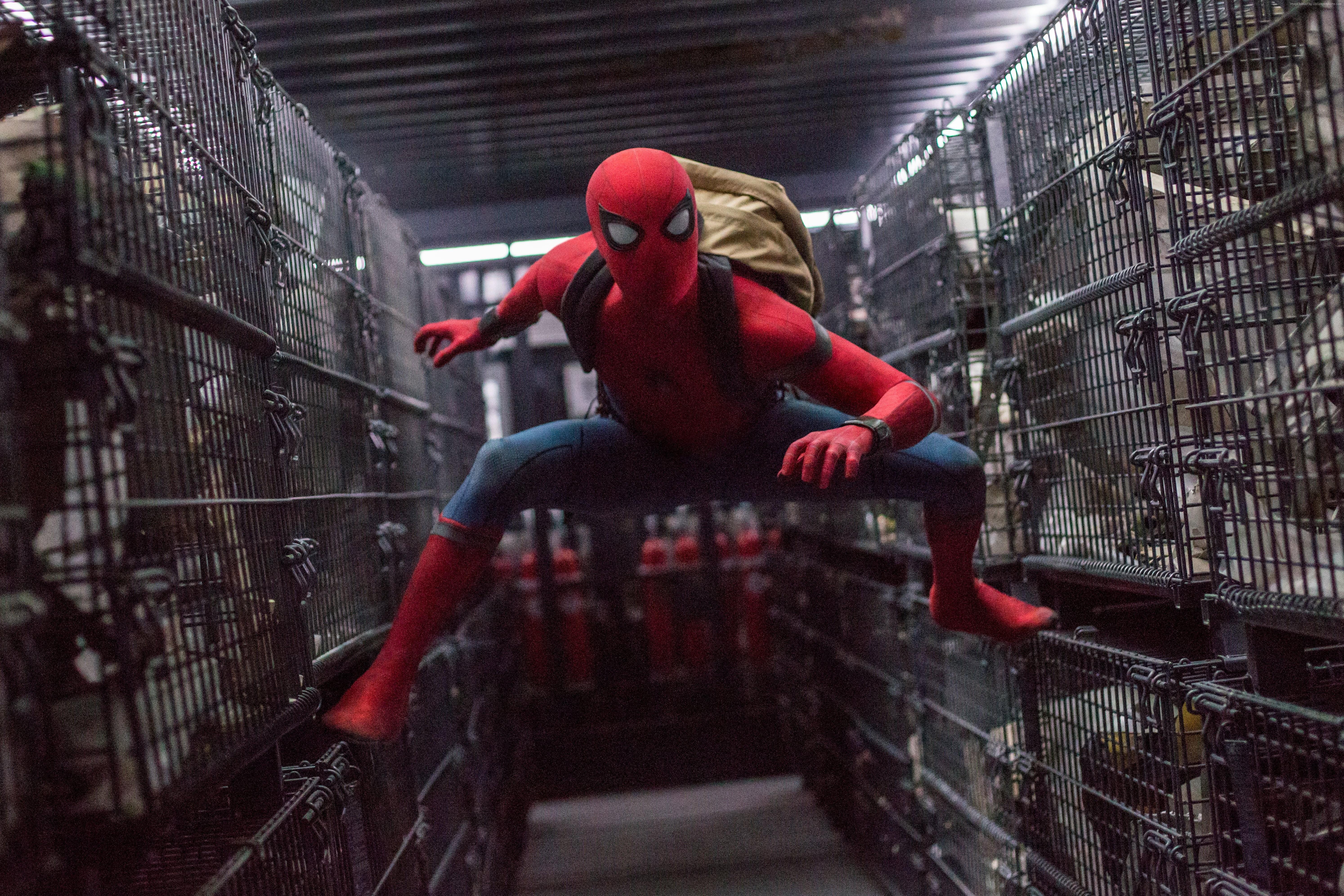 105648 Marvel Spider Man Homecoming Tom Holland 4k 8k 5976x3984