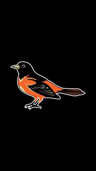 Baseball   Baltimore Orioles   4 iPhone 55C5S Wallpaper 325x576