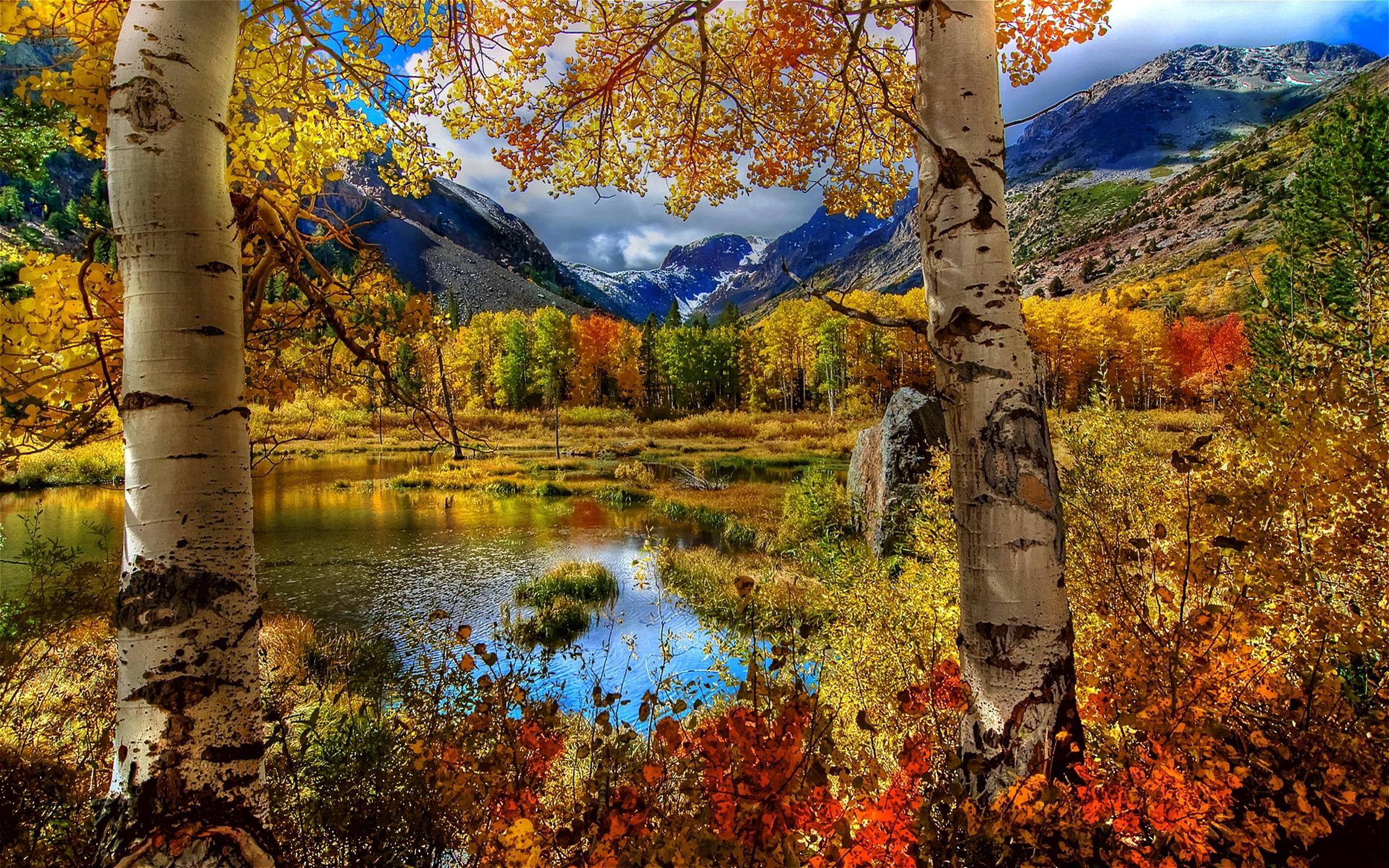 Autumn Scenery wallpaper   wallpapers download wallpaper 2304x1440