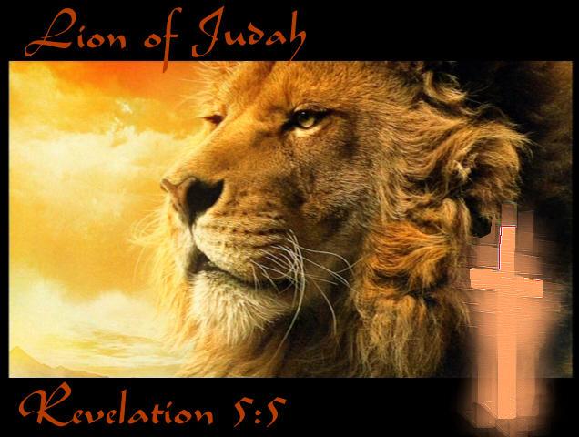 74 Lion Of Judah Wallpapers On Wallpapersafari