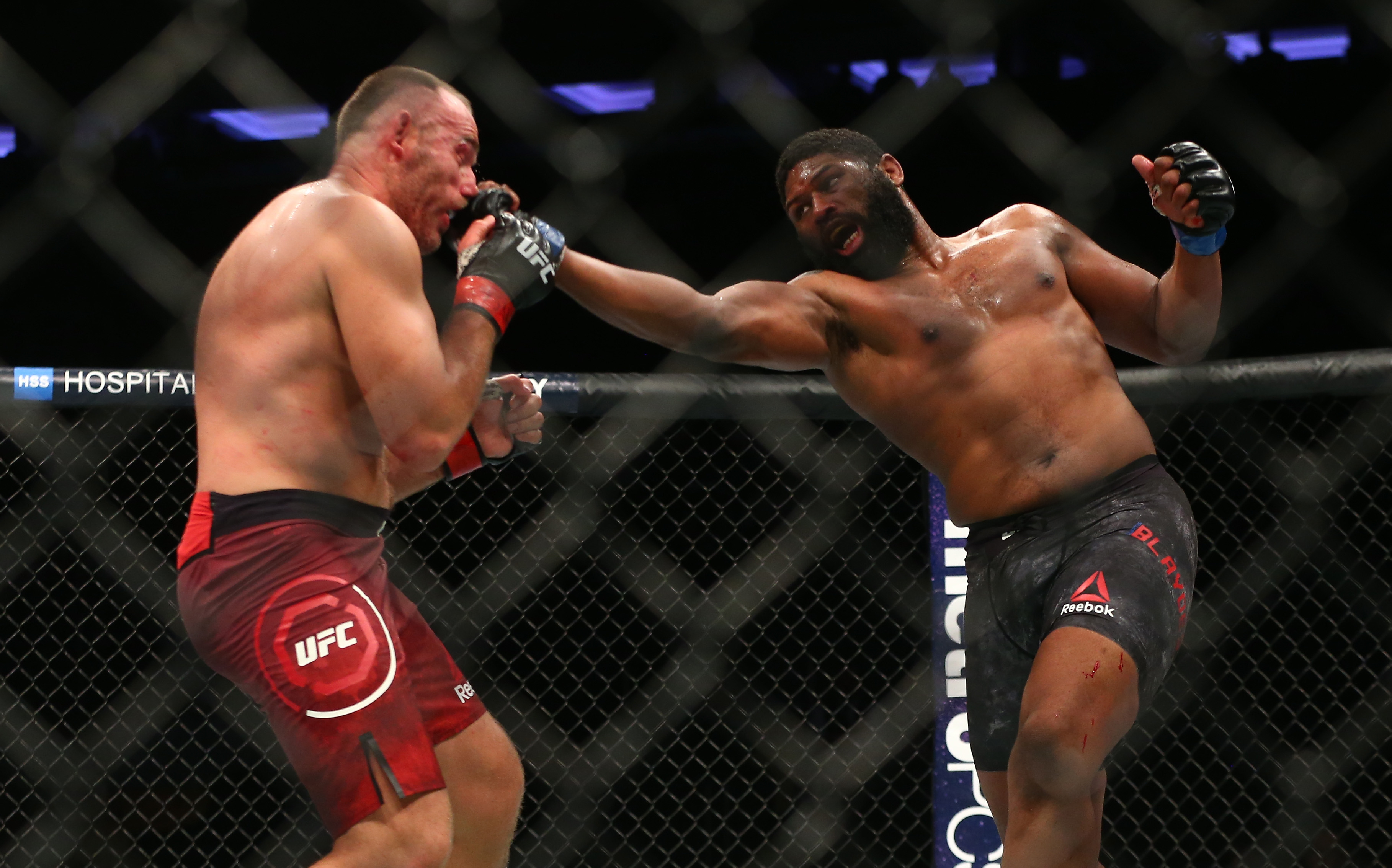 UFC 217 Gallery The best shots from an unforgettable night at 3636x2268
