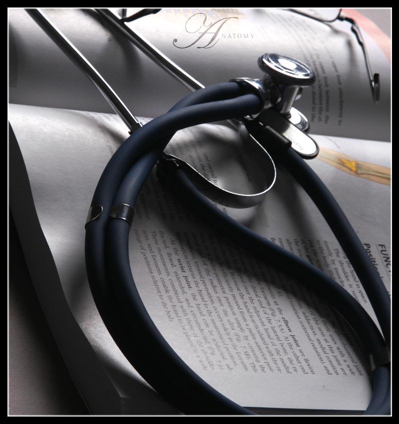 Anatomy of the Stethoscope by CapturedReality 800x850