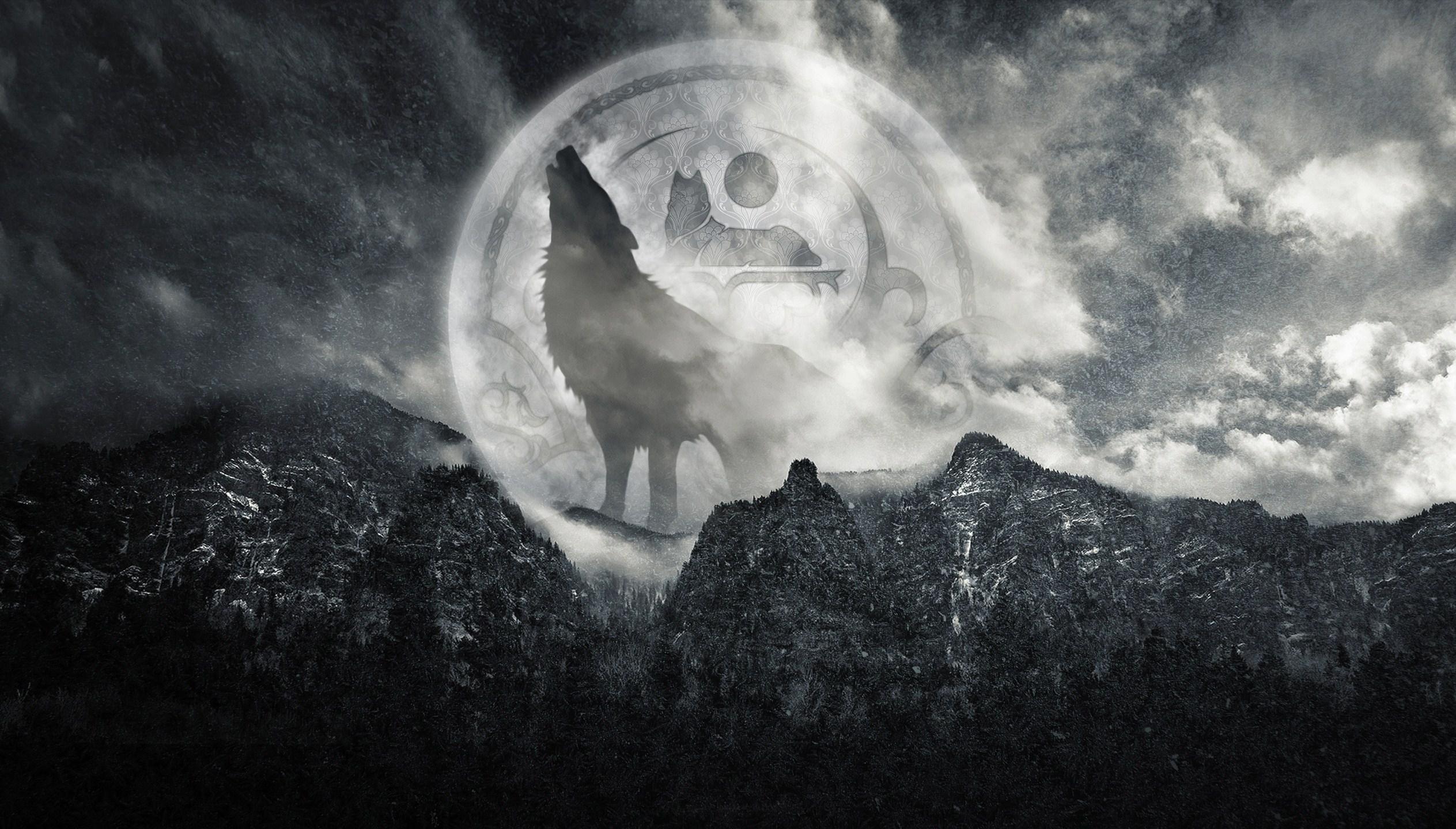 Wolf Computer Wallpapers Desktop Backgrounds 2527x1440 ID394014 2527x1440