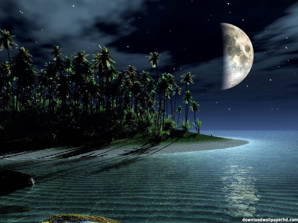 Midnight Beach Exclusive HD Wallpapers 299 1024x768