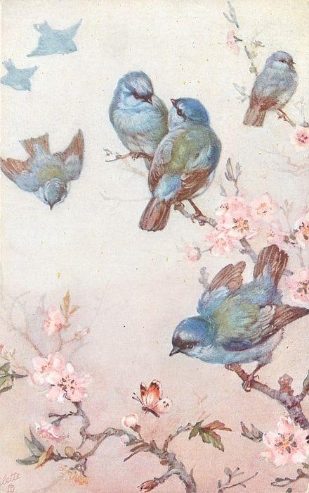 Wall Paper Art Vintage Birds Blossoms Trees Blue Birds Vintage 440x700