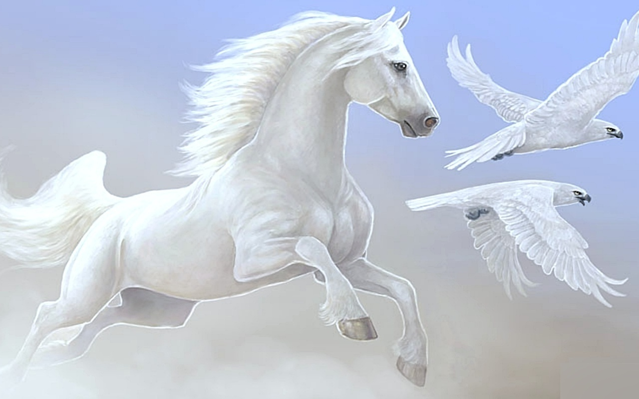 Beautiful Horse Wallpapers - HD Wallpapers