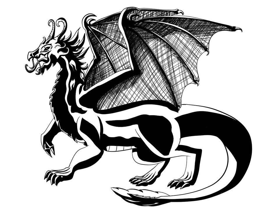 Black And White Dragon Pictures   Wallpaper HD Wide 900x720