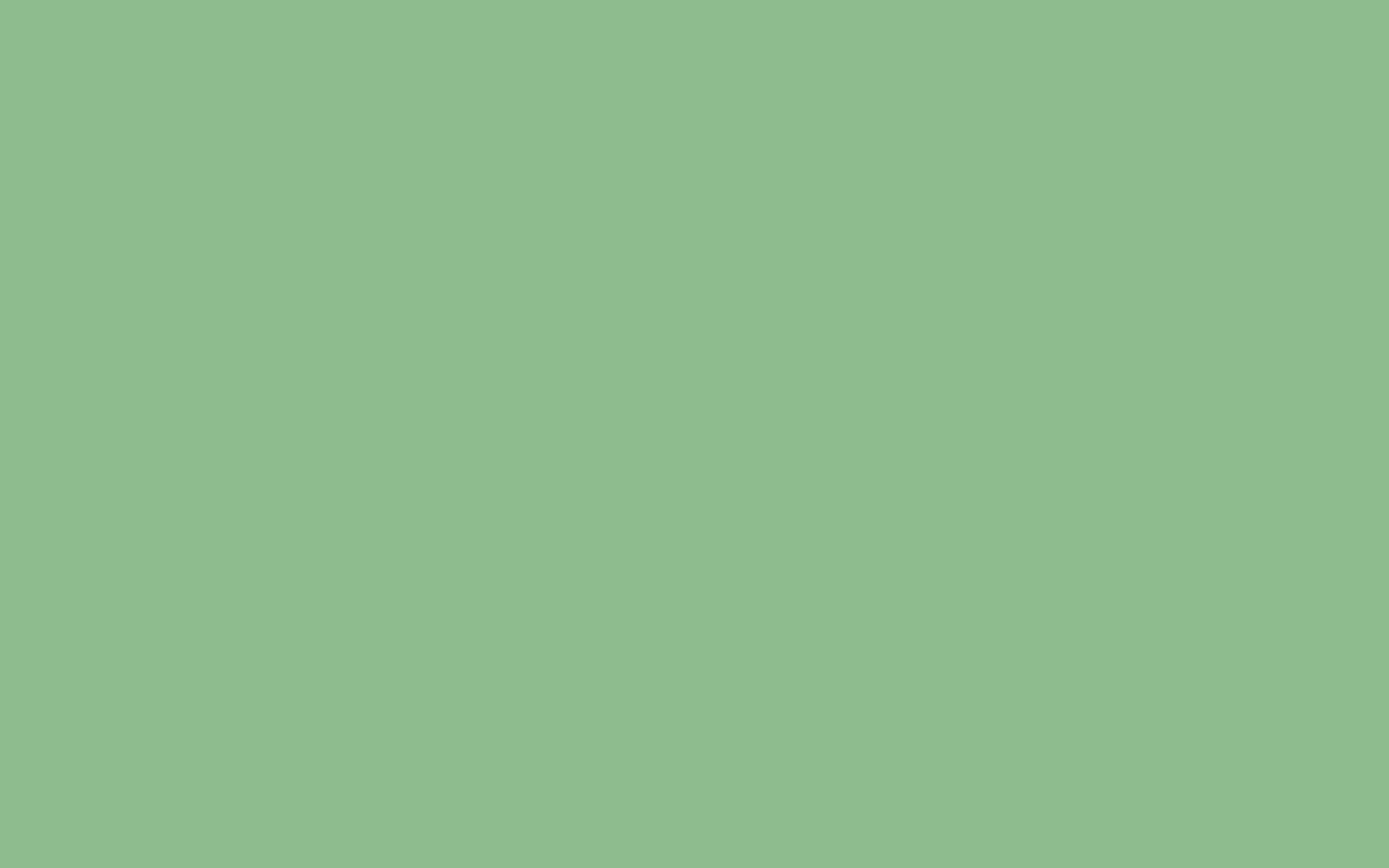 2560x1600 Dark Sea Green Solid 2560x1600