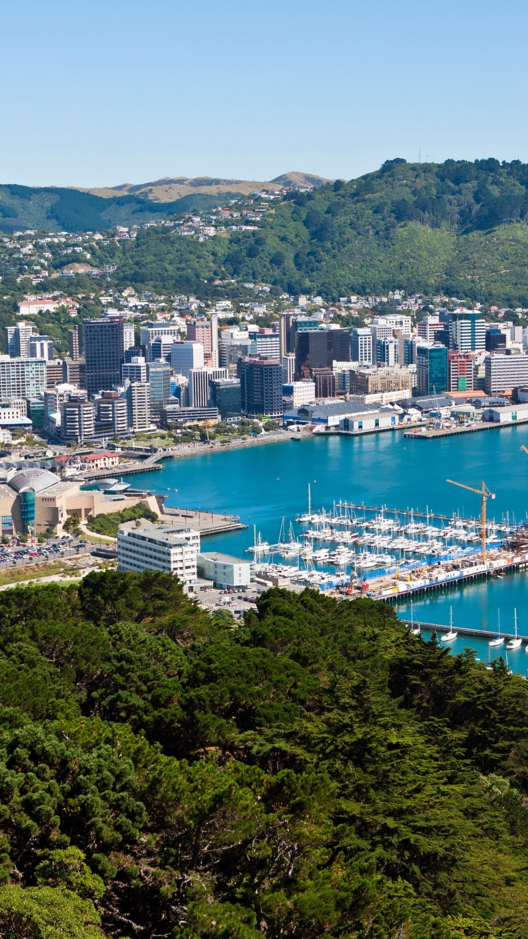 Download 1080x1920 Cityscape New Zealand Wellington Coast 1080x1920