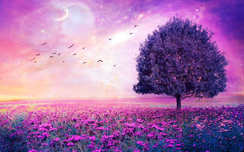 Purple Flowers Field Art Tree HD Wallpaper 2880x1800