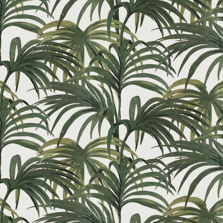 wallpaper featuring the Palmeral print green palm wallpaper cool 736x736
