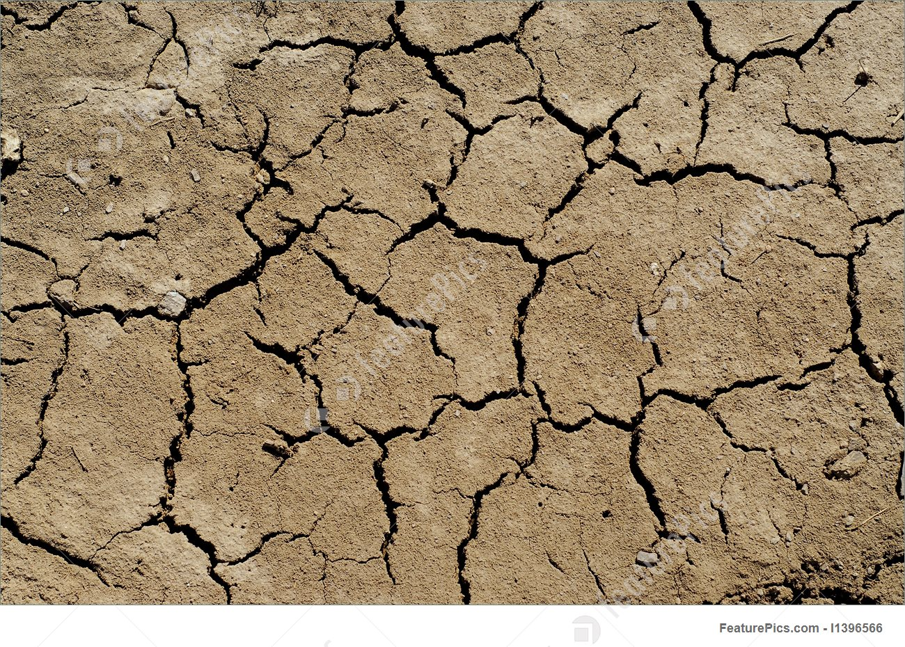 Dry Soil Background 1300x930