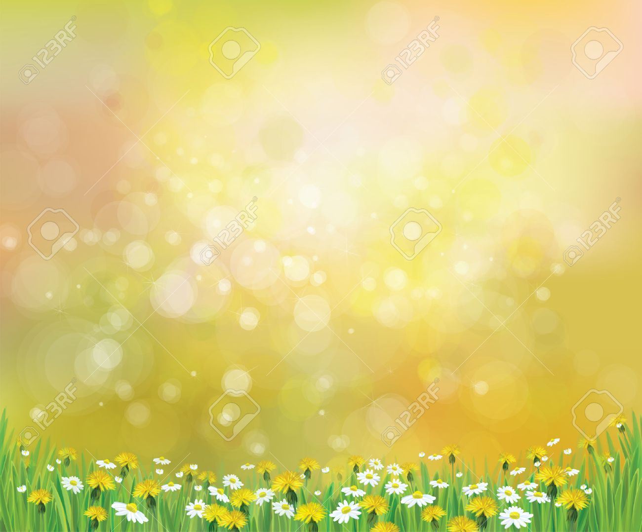 Vector Nature Spring Background With Chamomile And Dandelions 1300x1078