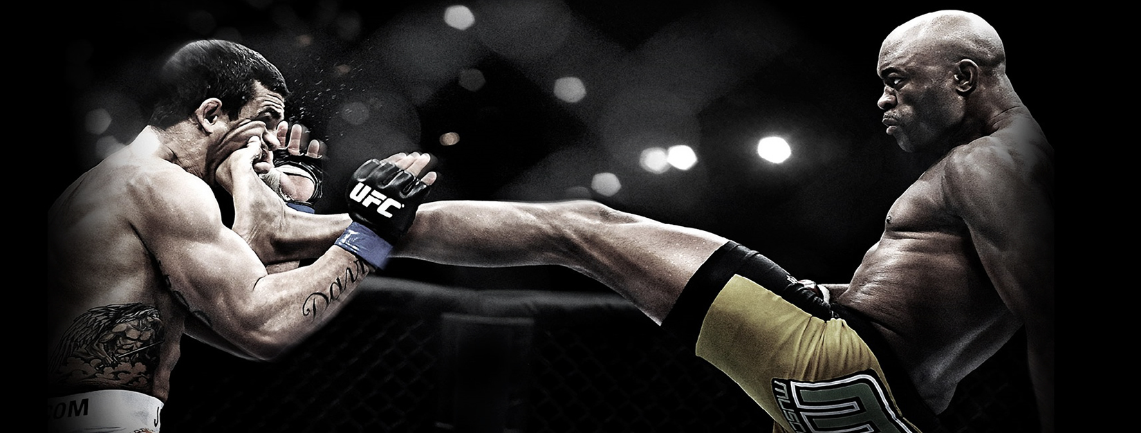 Sports MMA Wallpaper   MMA Gym   Kids Martial Arts San Clemente 1650x626