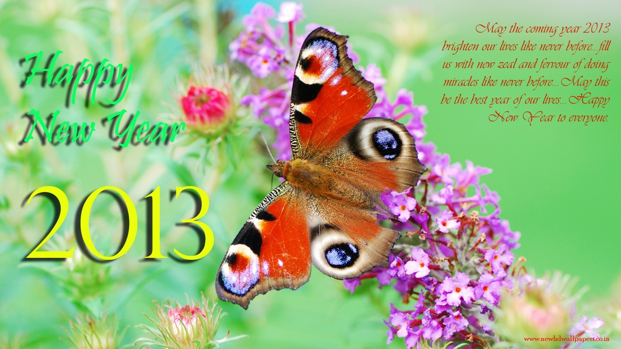 Happy New Year 2013 Wallpapers 3D Wallpaper Nature Wallpaper 1280x720