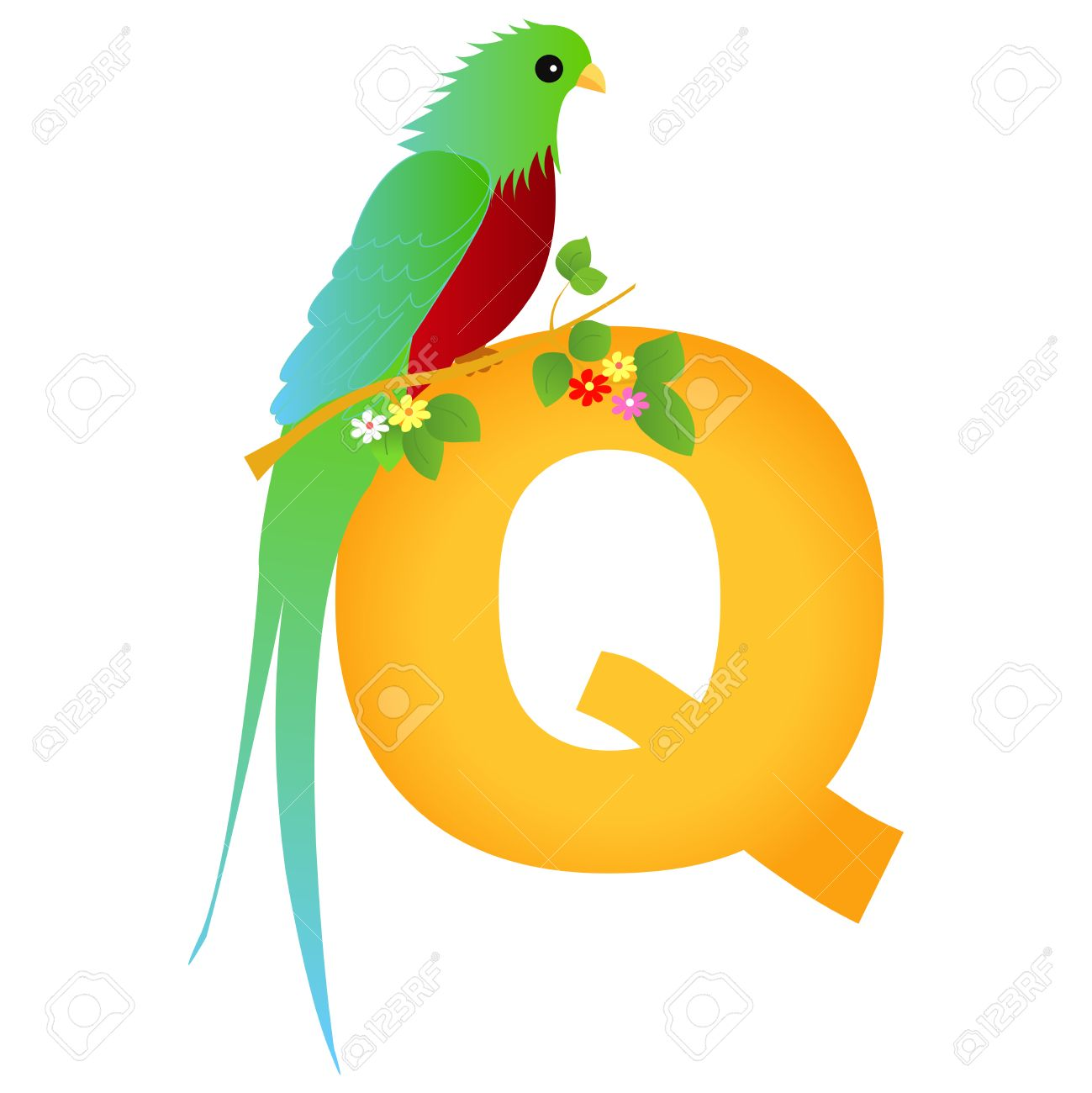 Colorful Animal Alphabet Letter Q With A Cute Quetzal Flash Card 1299x1300