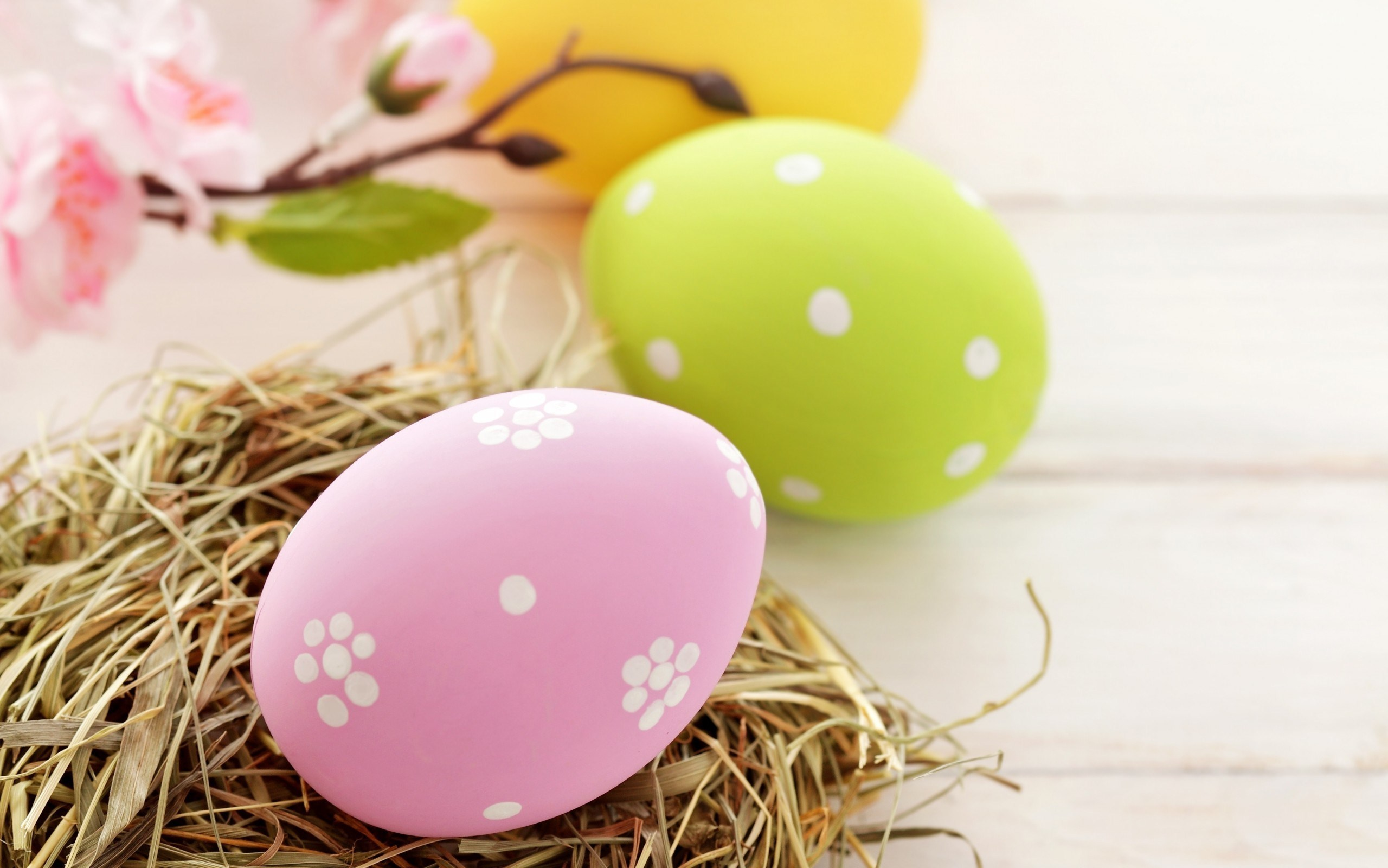 Easter Sunday Eggs Design Images Colorful Pictures Pics Hd 2560x1600