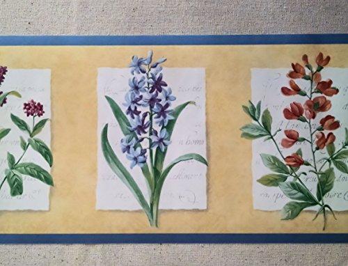 Flowers Wallpaper Border   Light Blue   KT003103B 500x382