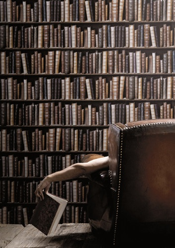 Library Book Wallpaper  Multi eBay 353x500