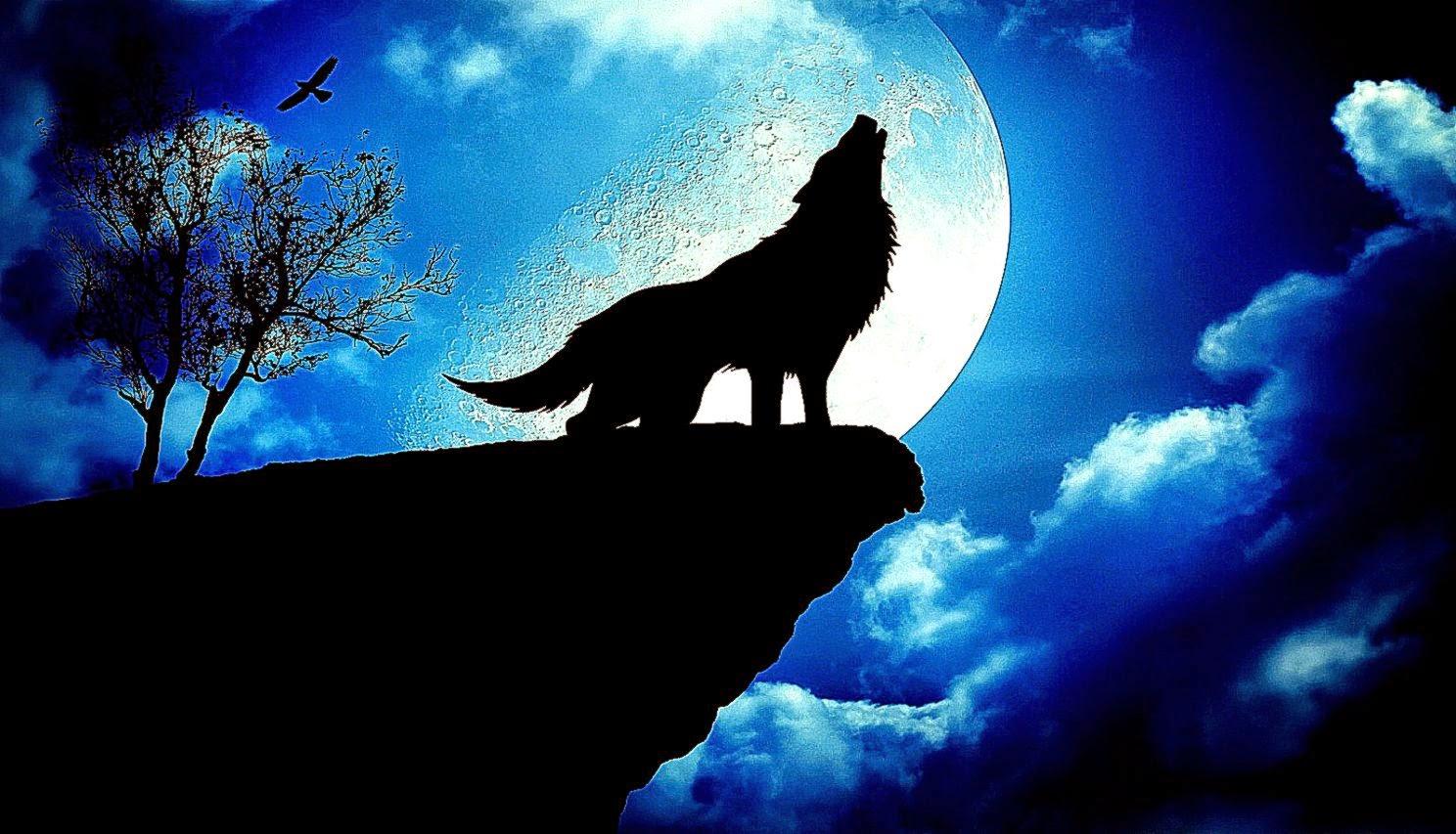 blue moon wolf wallpaper - photo #19