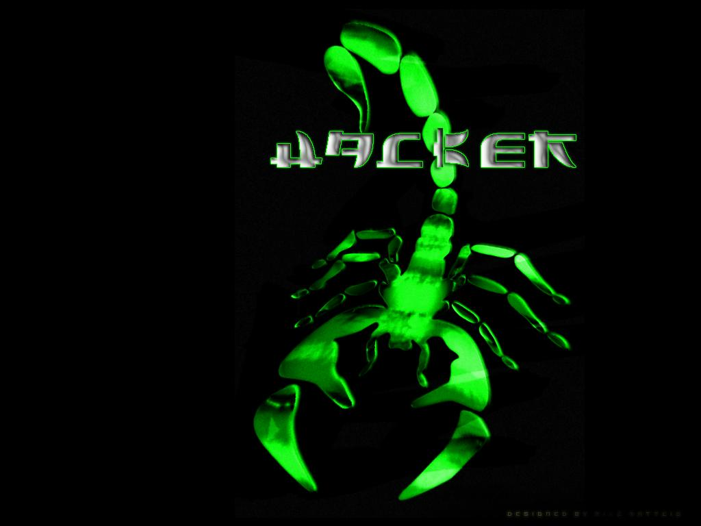 Hacker Wallpapers 1024x768