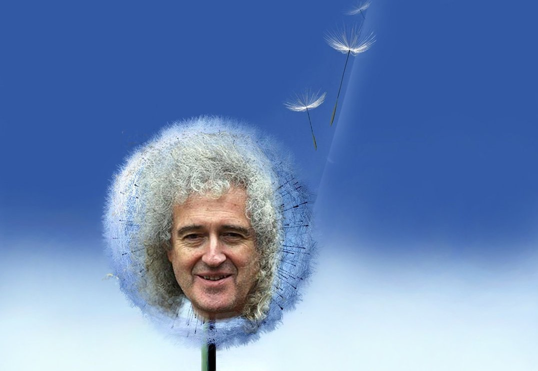 Samsung Galaxy Dandelion Brian May by Oceansoul7777 1076x743