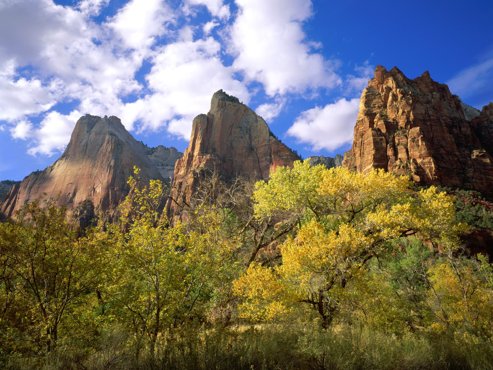 Three Patriarchs Zion National Park Wallpapers HD Wallpapers 1600x1200