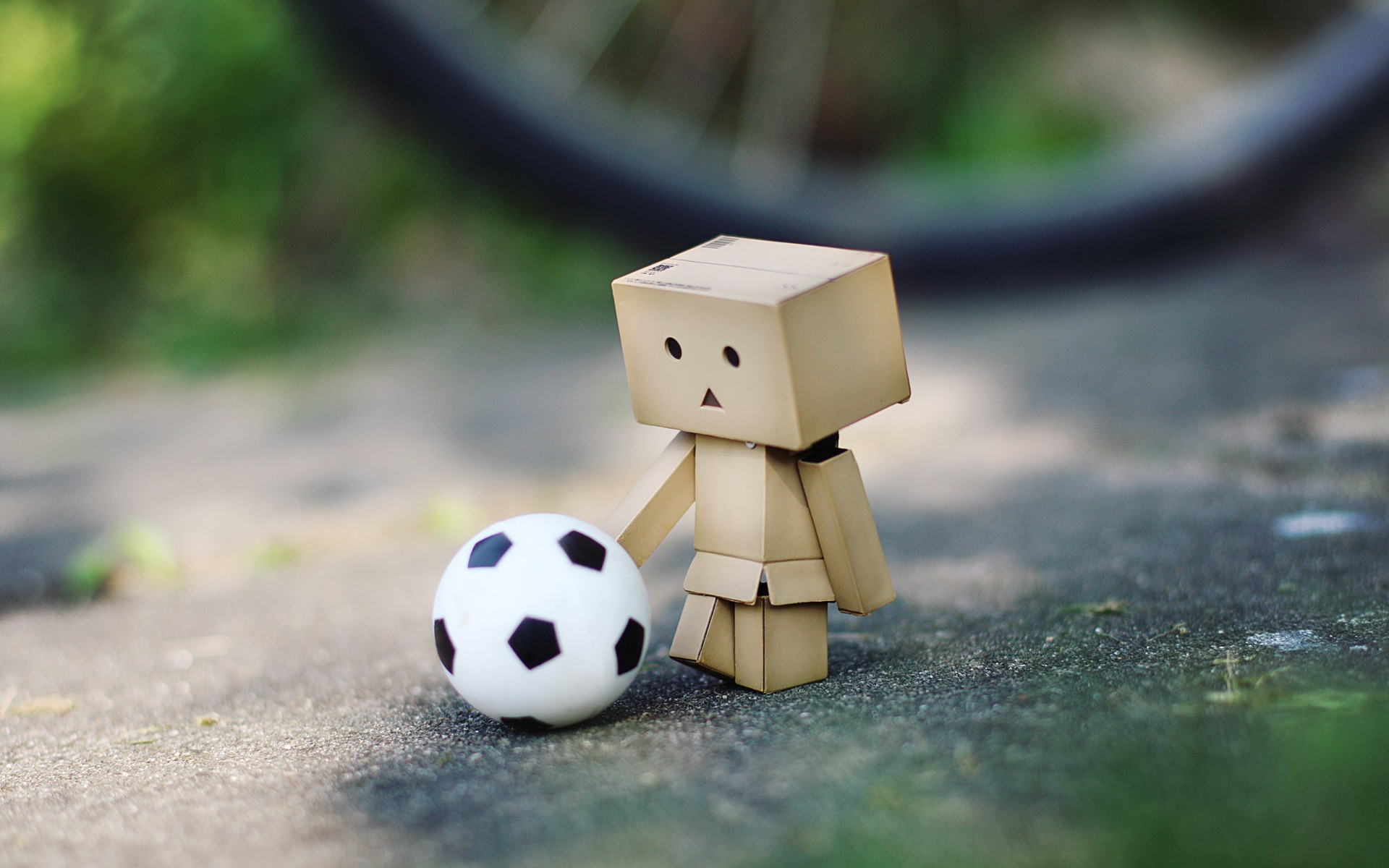 Danbo Playing Soccer Google Themes 1920x1200