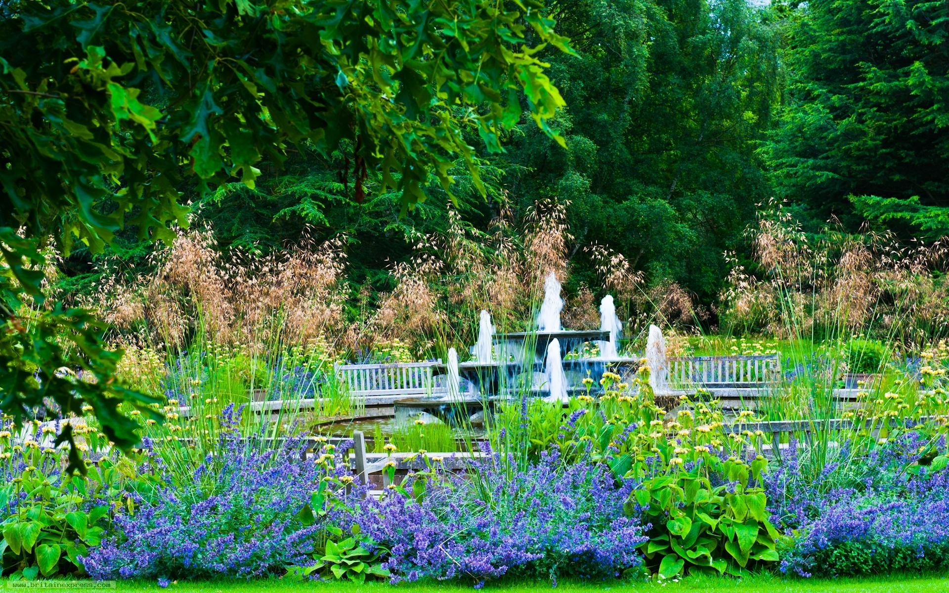 garden wallpaper zen 1920x1080px - photo #30
