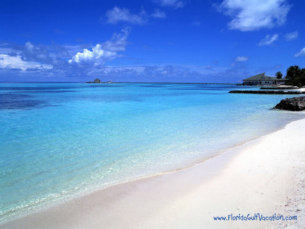 totally beach desktop wallpaper download 1024x768