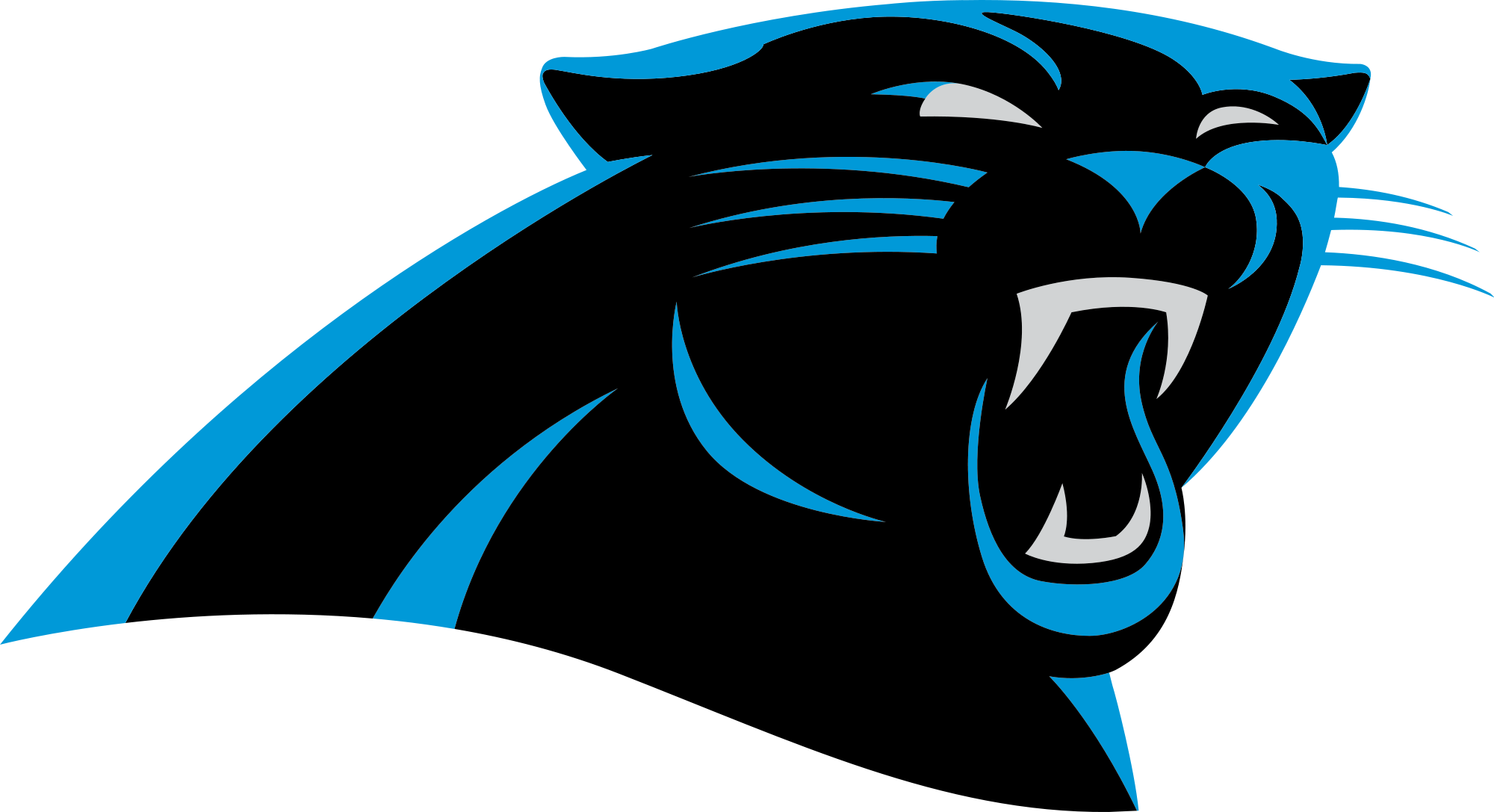division NFL football team the Atlanta Falcons Carolina Panthers 2000x1087