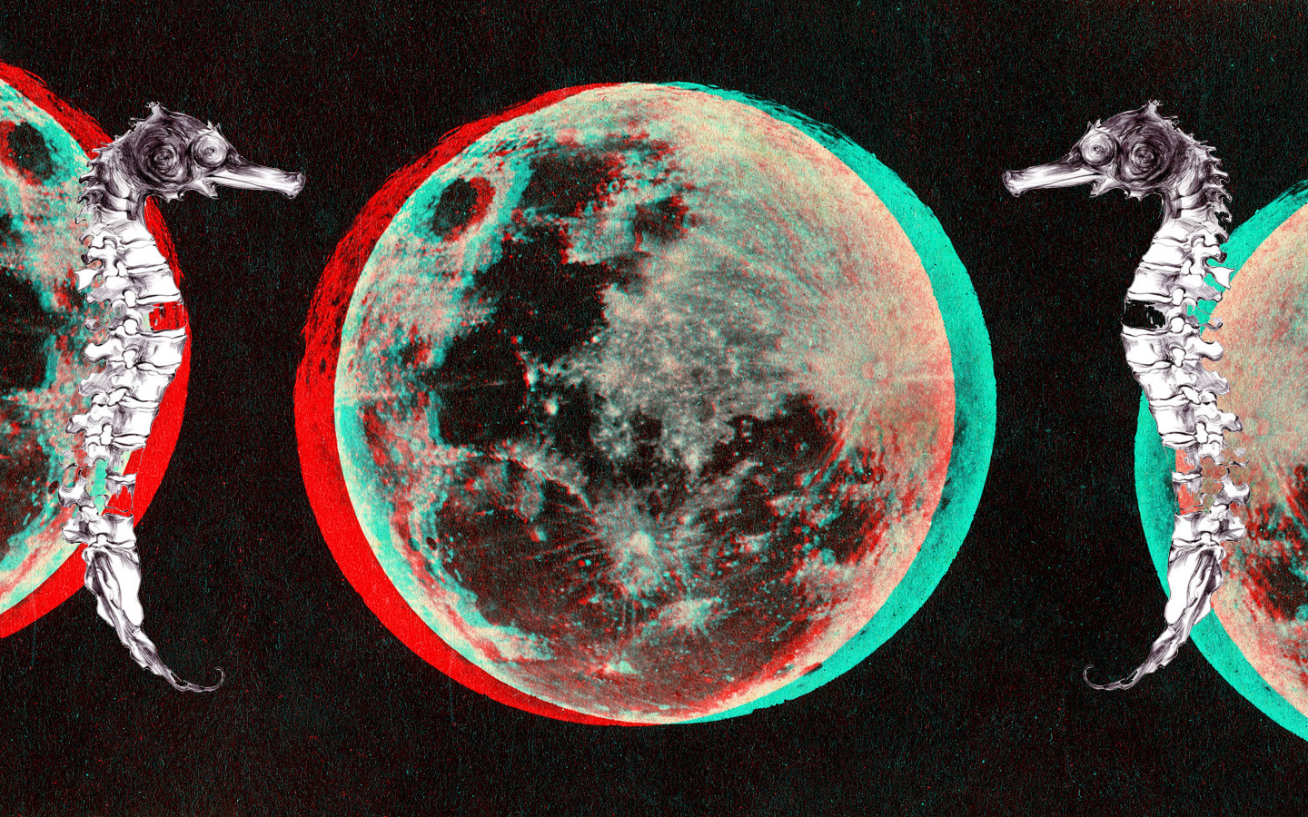pictures anaglyph 3d wallpaper 1024x768 anaglyph 3d Car Pictures 1440x900