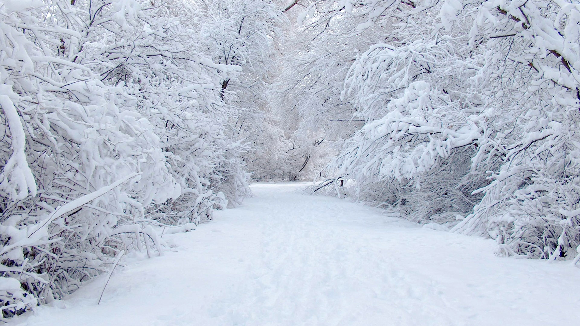 Winter Mac Wallpaper ...